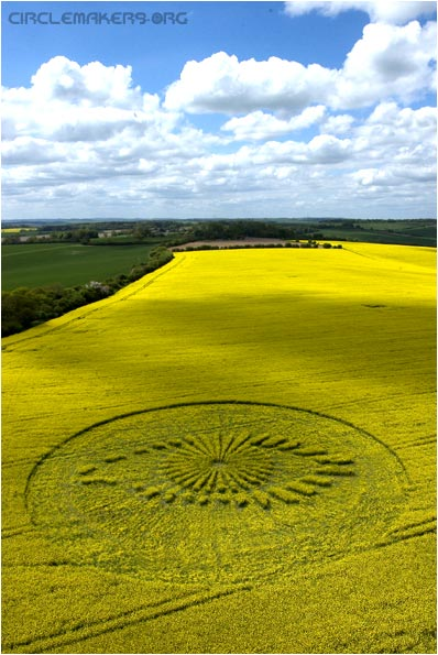 Big Brother crop circle
